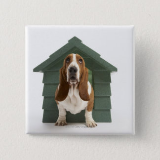 Dog by doghouse pinback button
