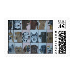 dog by eric ginsburg stamp