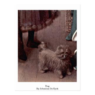 Dog By Johannes De Eyck Postcard