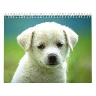 Dog calander wall calendar