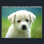 "Dog calander calendar<br><div class=""desc"">An adorable calander with dog pictures</div>"
