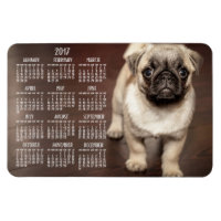 Dog calendar 2017 Photo Large Magnet 4x6