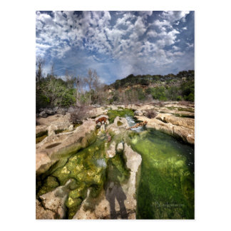 Dog Campbell's Hole Flats Barton Creek Austin Texa Postcard