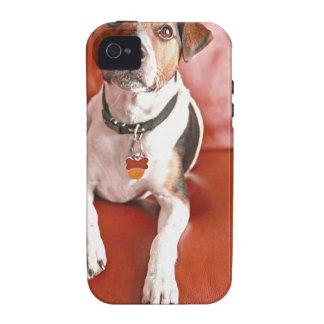 dog vibe iPhone 4 case