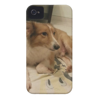 dog Case-Mate iPhone 4 cases