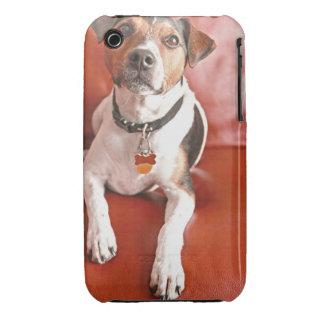 dog Case-Mate iPhone 3 case