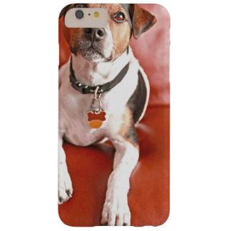 dog barely there iPhone 6 plus case