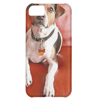 dog iPhone 5C case