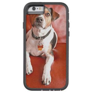 dog tough xtreme iPhone 6 case