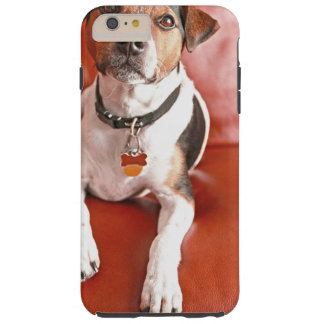 dog tough iPhone 6 plus case