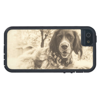 dog case for iPhone SE/5/5s