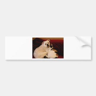 Dog Cat Cuddle Bumper Sticker