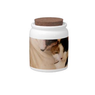 Dog Cat Cuddle Candy Jar