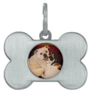 Dog Cat Cuddle Pet ID Tag