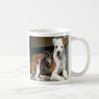 Dog & Cat Mug