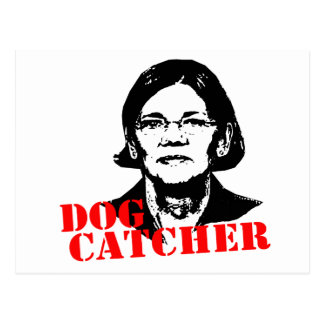Dog Catcher Postcard