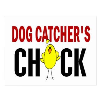 Dog Catcher's Chick 1 Postcard