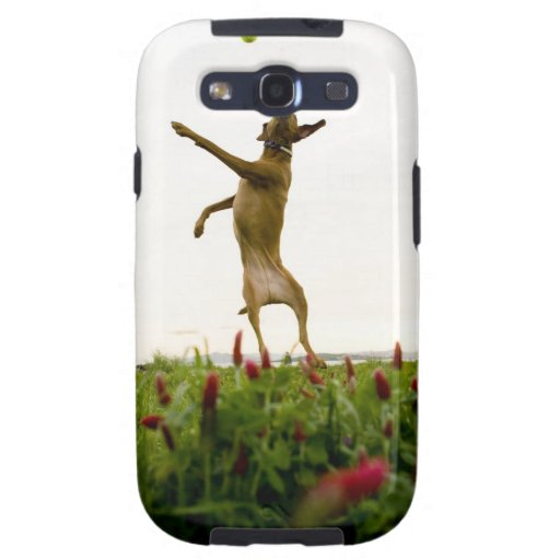 Dog catching tennis ball in mid-air galaxy SIII covers