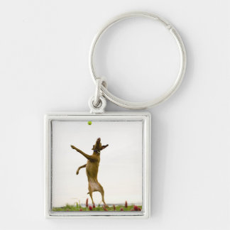 Dog catching tennis ball in mid-air keychains