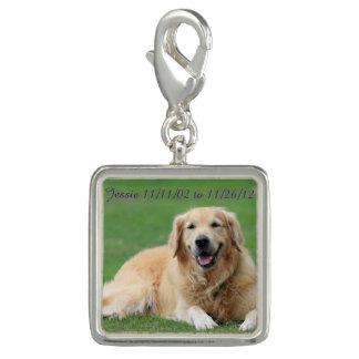 Dog Charm