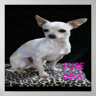 Dog Chihuahua Diva Print
