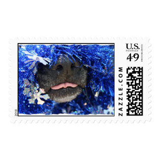 Dog Christmas Opinion Barely Tongue Simple Frame Stamps