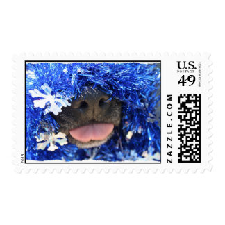 Dog Christmas Opinion Blue Tinsel Simple Frame Stamps