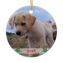 Dog Christmas Ornaments Personalized Photo