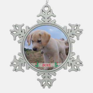 Dog Christmas Ornaments Pewter Personalized Photo at Zazzle
