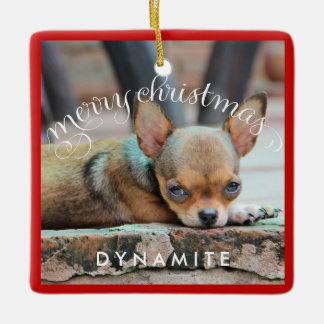 Dog Christmas Ornaments Square Personalized Photo