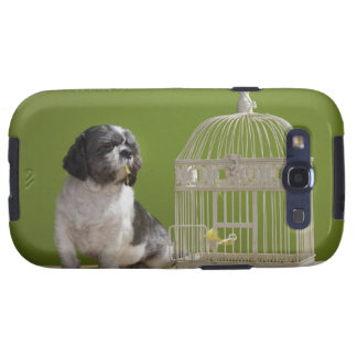 Dog close to a bird cage galaxy SIII cases