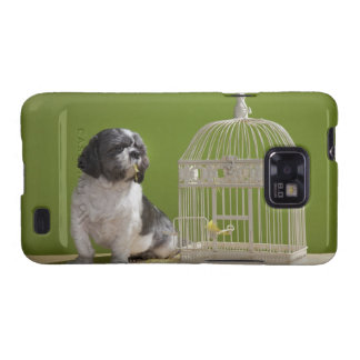 Dog close to a bird cage samsung galaxy s2 cover