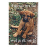 dog coat posters