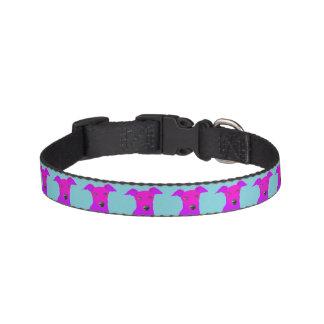Dog Collar with Italian Greyhound