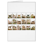 Dog Collection In Vintage Style Greeting Card