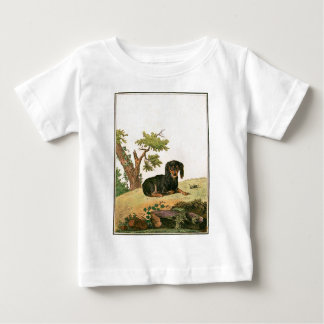 Dog - Continental Toy Spaniel Baby T-Shirt