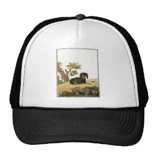 Dog - Continental Toy Spaniel Mesh Hats