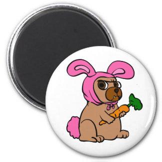 Dog costume rabbit magnet
