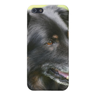 dog cover for iPhone SE/5/5s