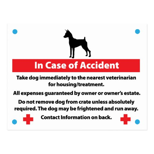 Dog Crate Card In Case of Emergency Post Card