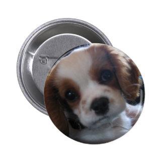 Dog - Customized Button