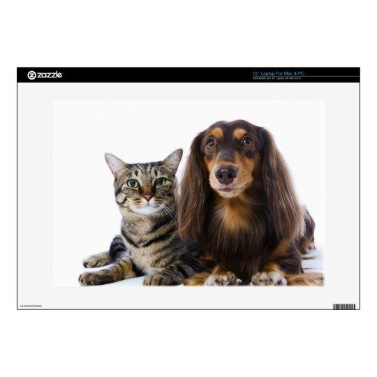 Dog (Dachshund) and cat (Japanese cat) on white Laptop Skin
