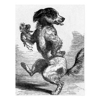 """""""Dog Dancing a Jig"""" Vintage Illustration Post Card"""