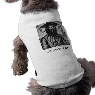dog, dangerous boy, pirate doggie tshirt