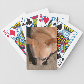 Dog Day at the Beach Bicycle Playing Cards