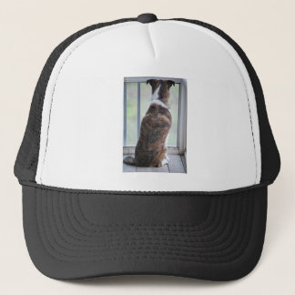 DOG DAY TRUCKER HAT