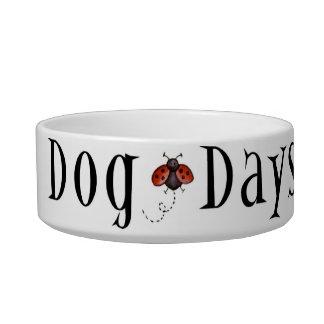 dog days bowl