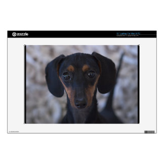 """Dog Decal For 13"""" Laptop"""