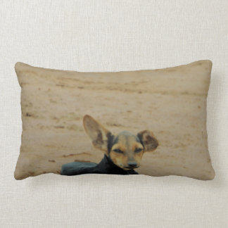 Dog Diva Lumbar Pillow