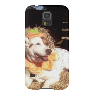 dog, dogs, fun, funny, Luna Says, Halloween, humor Galaxy S5 Cover